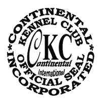 CKC Yorkies For Sale